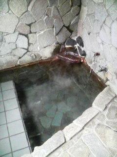 鷹の巣温泉