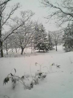 今日は雪見露天風呂