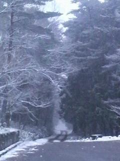 雪の押立温泉