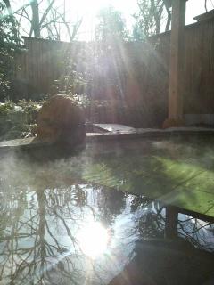 本日の温泉