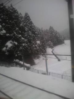 すごい雪…。