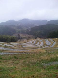 温泉&農業コラボ旅
