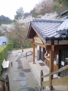 お寺のつるつる温泉