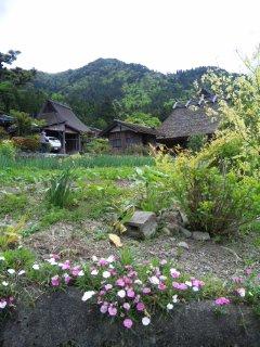 京都・美山町かやぶきの里