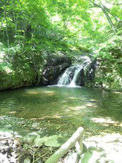 天然の滝壺温泉