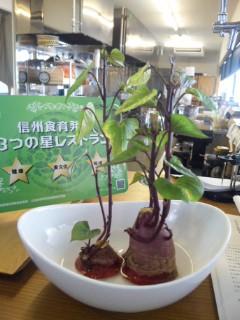 須坂の温泉グルメランチ