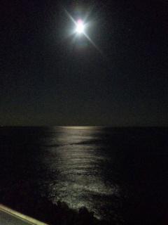 海にぽっかり月の道