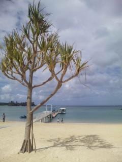 プライベートビーチのサンセット