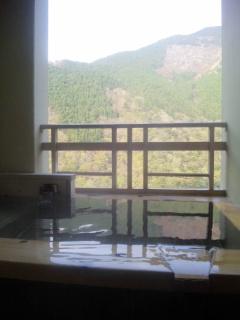 ブラボー!こんなお湯、初めてです。祖谷温泉