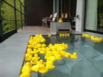 幸せの黄色い温泉