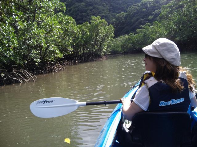カヌーに乗って、マングローブの森へ…。