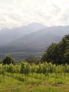 ワインリゾートの幸せ@「リゾナーレ八ヶ岳」